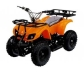 MINI BIKE QUAD 50cc